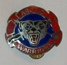 10th Infantry Mountain Division Arctic Warriors badge