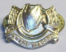 Kragmärke Collar Badge Cavalry Irish Army: Silver