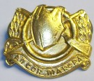 Kragmärke Collar Badge Cavalry Irish Army: Gold