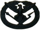 Insignia Career Counselor Original