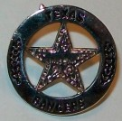 Pin Texas Rangers