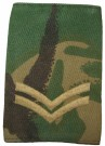 Rank slide Corporal DPM Woodland